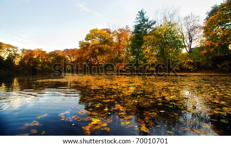 A beautiful autumn landscape with water and colorful trees. - stock photo
