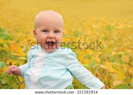 A beautiful Caucasian 6 month old baby girl sits outside in the Autumn in a farm field of soy beans with yellow leaves. - stock photo
