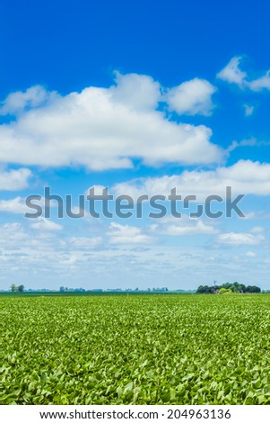 A beautiful field in the countryside, under a nice blue sky. - stock photo