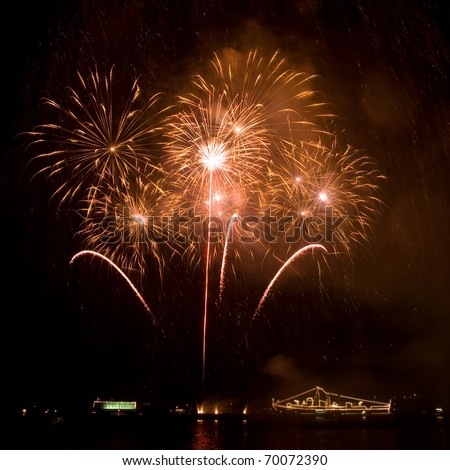 A beautiful fireworks in the night sky - stock photo