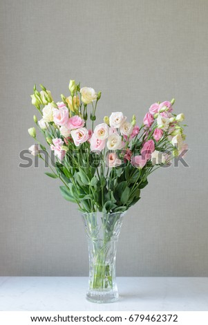 Beautiful Flower Vase Simple Background Stock Photo Royalty Free