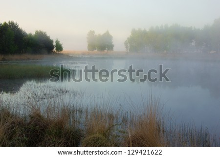 A beautiful foggy spring morning at a fen in the Netherlands. - stock photo