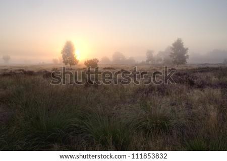A beautiful foggy sunrise in early autumn - stock photo