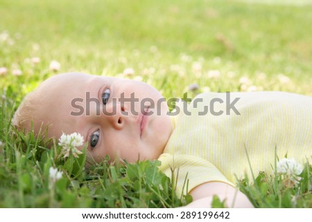 A beautiful 3 month old newborn baby girl with striking blue eyes is looking at the camera as she lays outside in the grass and clover flower field on a summer day.