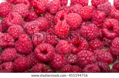 A beautiful selection of freshly picked ripe red raspberries. - stock photo