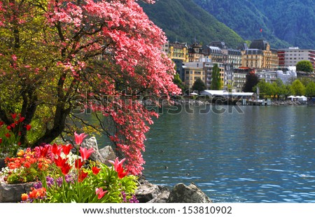 A beautiful spring landscape with flowers and blooming magnolia branch, Lake Geneva and view of Montreux, Switzerland. Selective focus - stock photo