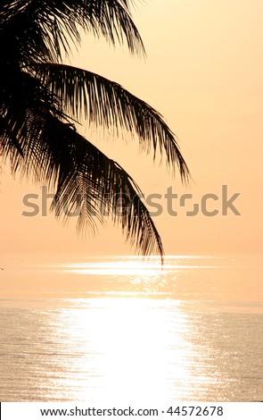 a beautiful sunset on Sanibel Island Florida - stock photo