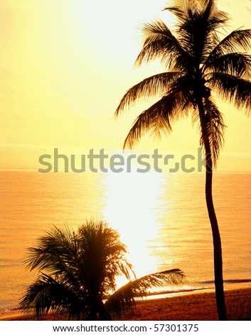 a beautiful sunset on Sanibel Island Florida - stock photo