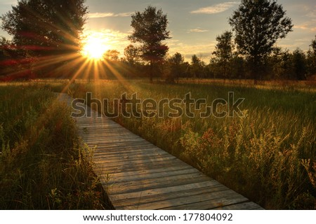 A beautiful warm summer sunset view along a long boardwalk as it winds through a midwest prairie in northwest Ohio.  - stock photo