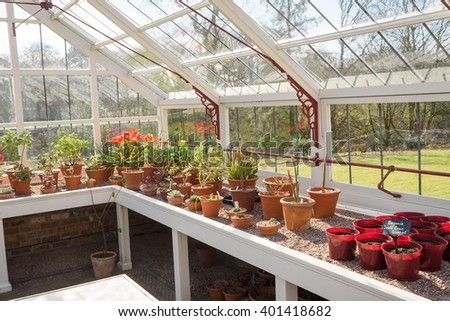 A beautiful white wooden greenhouse with an array of flowers and plants - stock photo