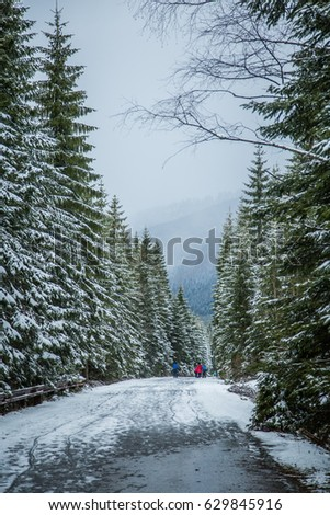 A beautiful winter mountains forest landscape with a road. Western Tatra mountains in Slovakia