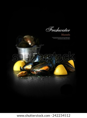 A beautifully creatively lit curated image of freshwater mussels, chive herbs and lemon against a black background. Copy space. - stock photo