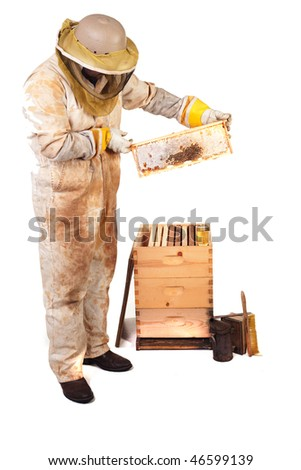 a beekeeper holding up a frame with honey and comb isolated - stock photo