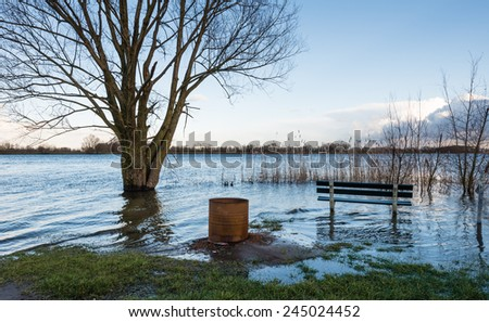 A bench, a bare tree and a rusty oil drum in the water due to the high water level of the river. - stock photo