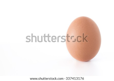 A big chicken egg, isolated on white background. - stock photo
