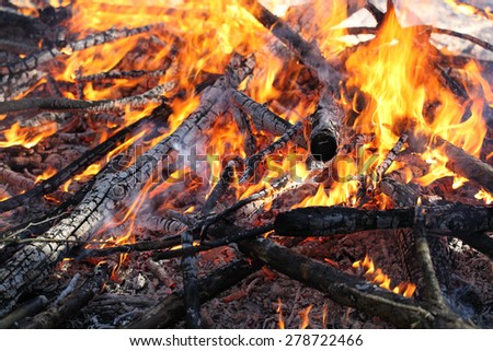 a big fire in the forest - stock photo