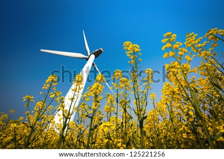 a big wind turbine in rapeseed field with a clear sky - stock photo