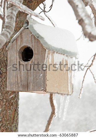 A bird house after an ice storm with icicles hanging off its roof, with a snowstorm blowing snow on it, abstract concept of an abandoned home - stock photo