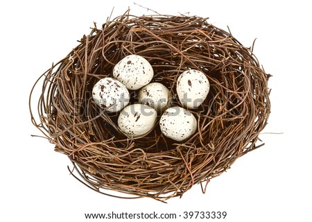A bird nest with six eggs isolated on white. - stock photo