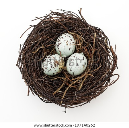 A bird's nest with three eggs waiting to hatch. - stock photo