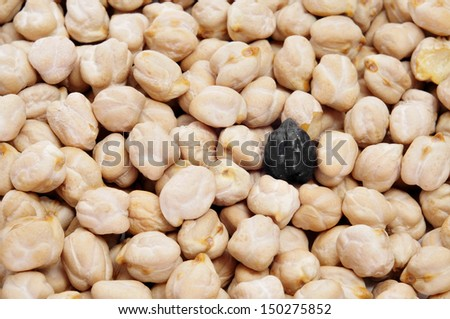 a black chickpea in a pile of dried chickpeas - stock photo