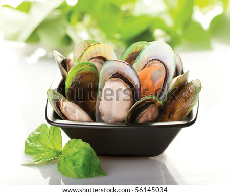 A black plate of New Zealand mussels with a white background - stock photo