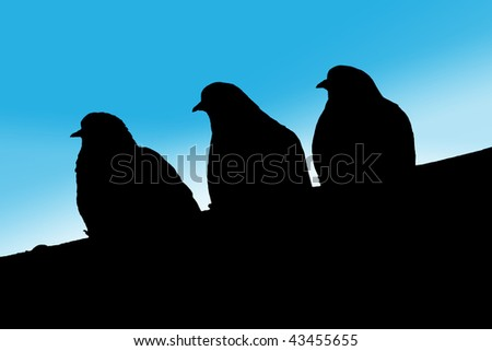 A black silhouette of three doves on blue background. - stock photo