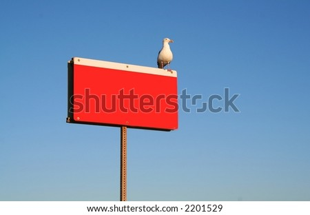 A blank red sign with a seagull sitting on top. - stock photo