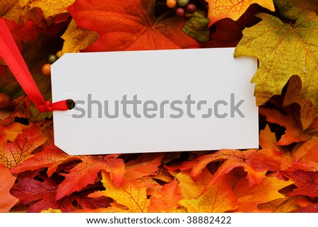 A blank tag sitting on a fall leaf background, fall harvest - stock photo