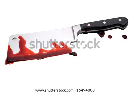 A bloody butcher's knife