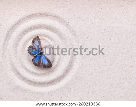 A blue vivid butterfly on a zen stone with circle patterns in the white grain sand - stock photo
