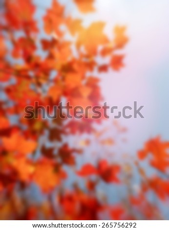 A blurred background of Autumn red maple leaves with lens flare - stock photo