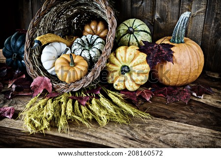 A bountiful thanksgiving cornucopia with squash, gourds, pumpkins, wheat and leaves on an old antique table.  Filtered for an aged retro look.  - stock photo