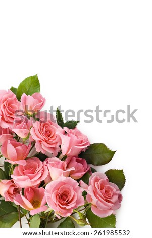 A bouquet of beautiful petite pink roses on a white background, perfect for Easter or Mothers Day