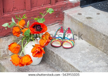 Bouquet big red poppy flowers white stock photo image royalty a bouquet of big red poppy flowers in a white jug standing on some stairs outside mightylinksfo