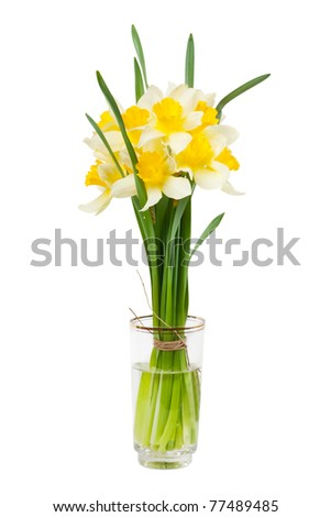 A bouquet of narcissi in a glass with water isolated over white