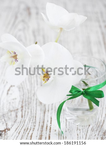 A bouquet of white  orchids in a glass