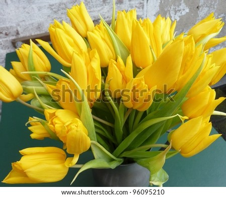 a bouquet yellow tulips on a vase - stock photo