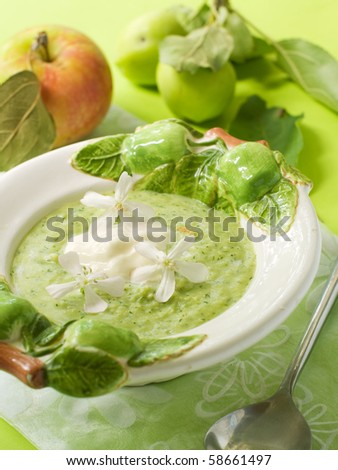 A bowl of green fruit soup for dessert - stock photo