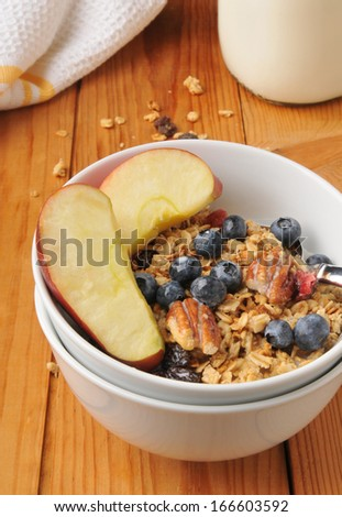 A bowl of organic granola with blueberries, apples, raisins, pecans, and dried cranberries