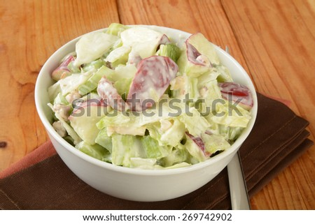 A bowl of Waldorf salad with apples and chicken - stock photo