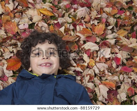 A boy lays in the floor in a pattern of fallen leaves - stock photo