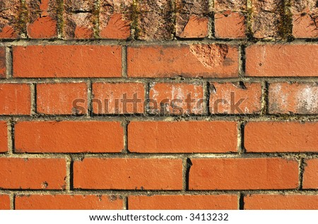 A brick wall, slightly stained and chipped. Suitable as graphic background.