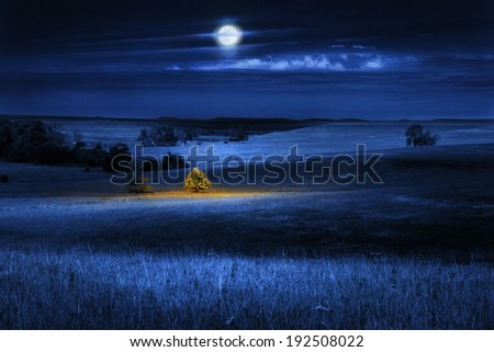 A brightly lit Christmas Tree glows warmly with the Christmas Spirit on a cold winter's night, under a full moon, in the open tall grass prairie. - stock photo
