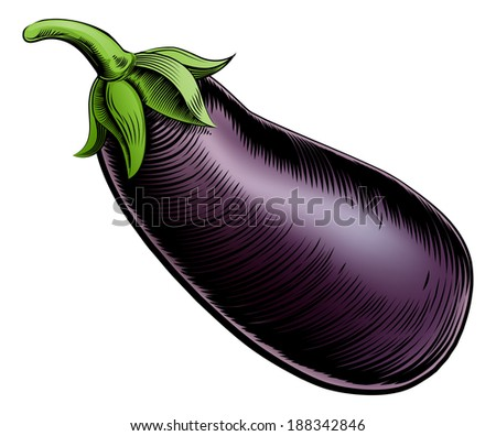 A brinjal eggplant aubergine vintage woodcut illustration in a vintage style - stock photo