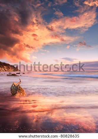 A brown pelican overlooks a coastal seascape at sunset with monsoon storm clouds. - stock photo