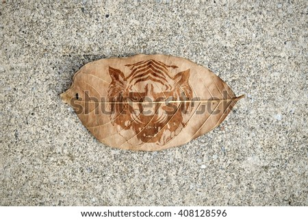 A browning autumn leaf with imprint of a tiger head the concept of shrinking habitat of endangered animal. - stock photo