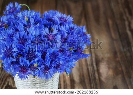 A bunch of beautiful summer flower of Cornflower in the white bucket.. Concept of romantic. - stock photo