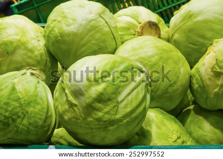 A bunch of fresh cabbage. Grocery Store. - stock photo