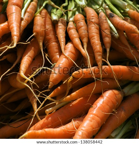 A bunch of fresh carrots  - stock photo